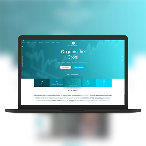 The Consultants - Unlock the value - Website Creatie