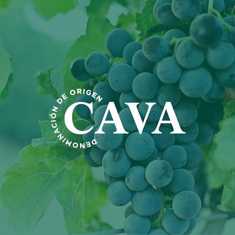 Agencia de diseño gráfico para DO Cava