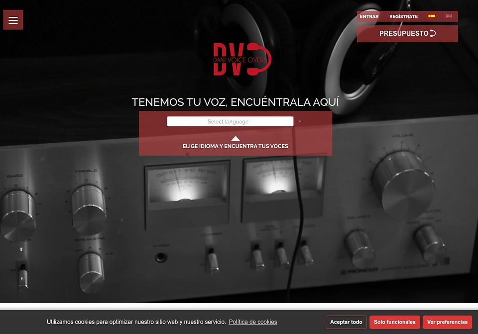 Web danivoiceovers.com
