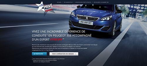 Peugeot France National Campaign - Création de site internet