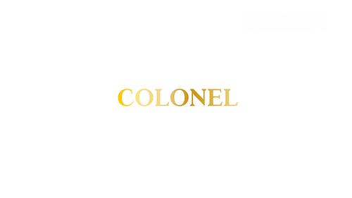 Colonel restaurant E-Commerce - E-commerce