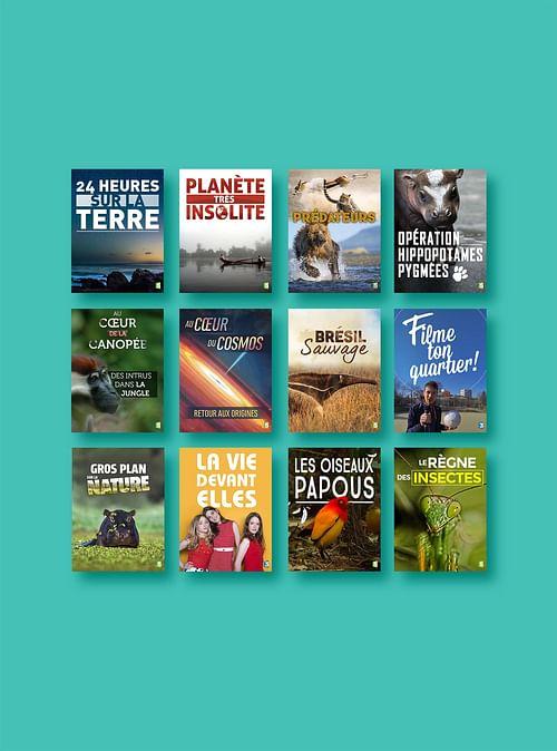 FRANCE TV : Site internet et visuels - Image de marque & branding