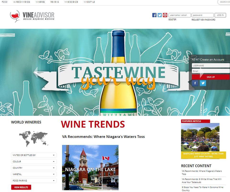 Website design for Vine Advisor