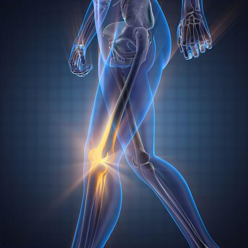 New frontiers in orthopaedics and bone diseases - Website Creatie