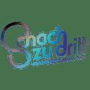 Schach zu Dritt Gesellschaft für Kommunikation mbH Logo