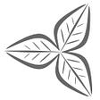 Fertile Media logo