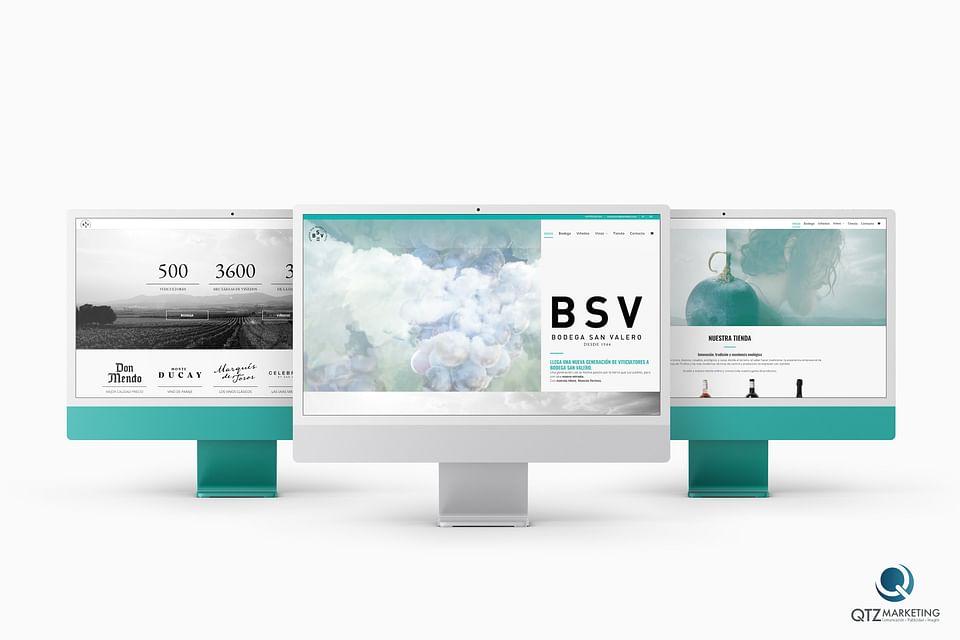 Diseño y desarrollo Web   BSV