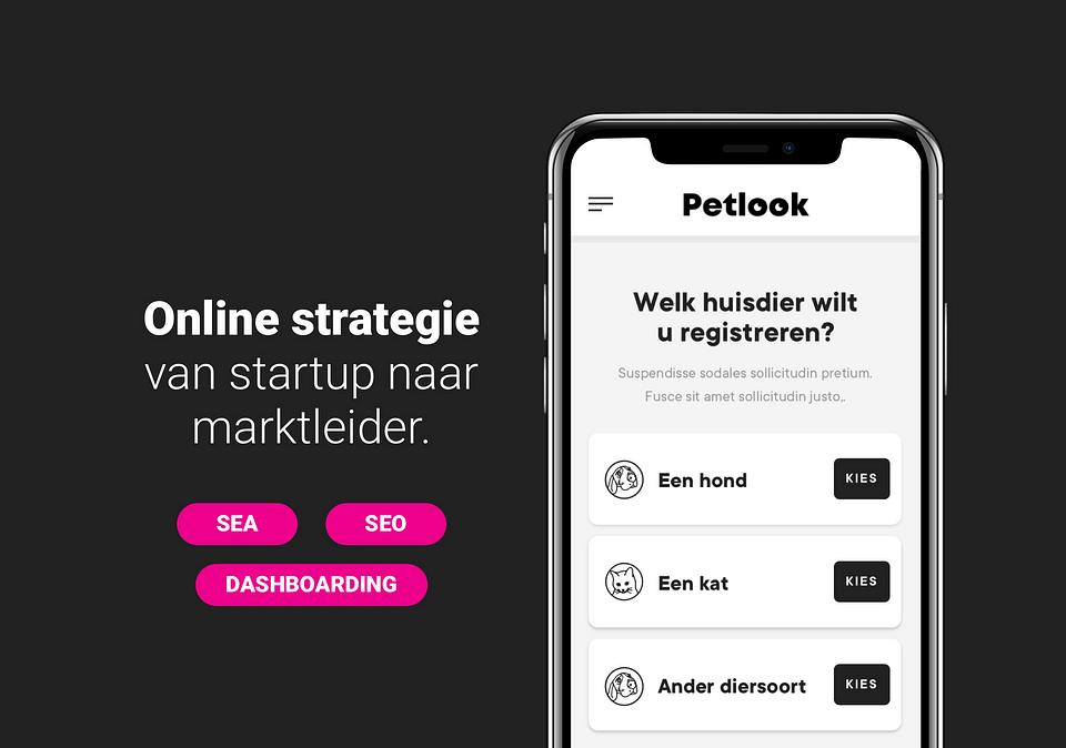 Petlook - Online strategie