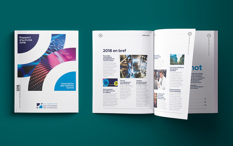 Rapport annuel 2018 Instituts Carnot