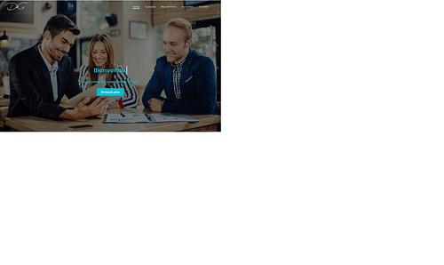 DLSG - Création de site internet
