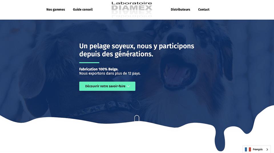 Diamex Site web + CMS + Carte interactive