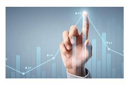 Enterprise Tiger: The Gem of Sumeru Solutions - Website Creation