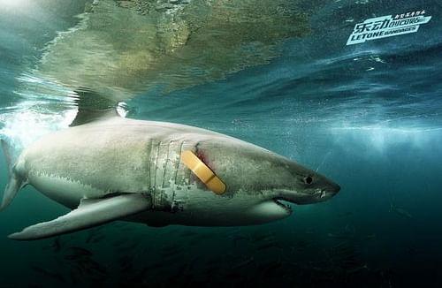 Shark - Advertising