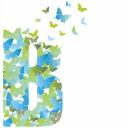 Bolboreta Comunicación y Eventos logo