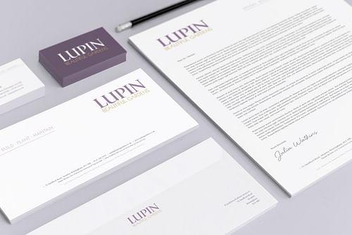 Company Branding, Website Design & Marketing - Graphic Design