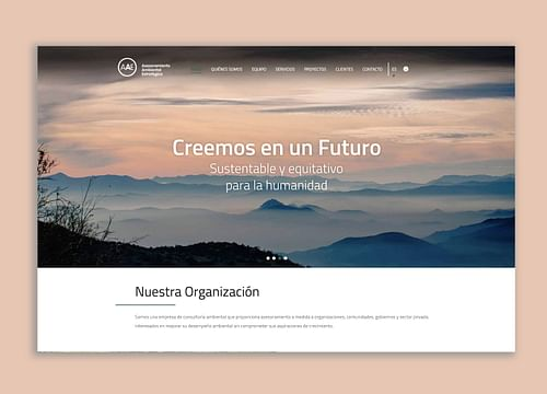 Desarrollo web / SEO / UX UI AAE - Creación de Sitios Web