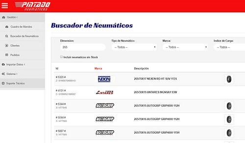 Portal B2B de Neumaticos Pintado - Aplicación Web