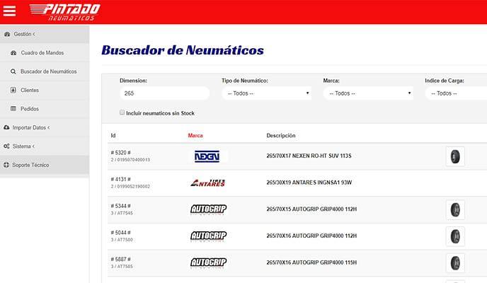 Portal B2B de Neumaticos Pintado