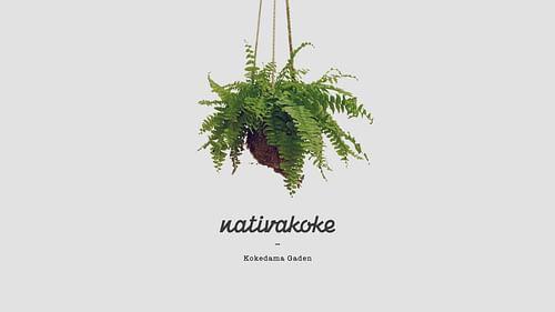 Nativakoke - Branding y posicionamiento de marca