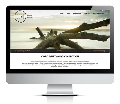 Coro Driftwood - Digital Strategy