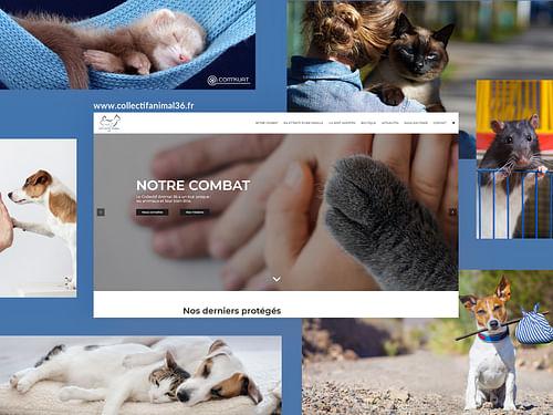 Collectif Animal 36 - Création de site internet