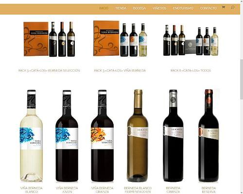 Tienda Online - Ecommerce - Bodega de Rioja - Creación de Sitios Web
