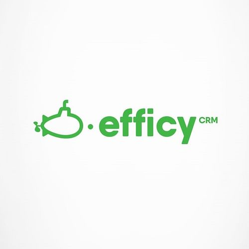 Branding  and Website creation - Efficy - Création de site internet