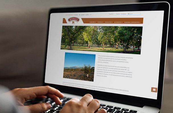 BORGES Bain - Diseño web y maquetación