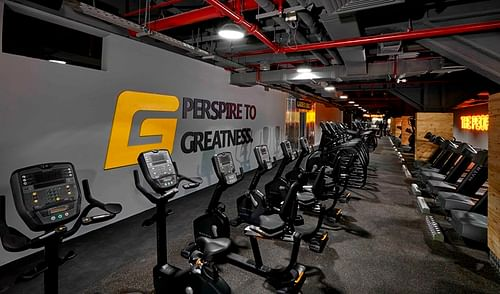SEO & Lead Campaign - Gymnation - Fitness Company - Online Advertising
