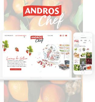Andros Chef - Création de site internet
