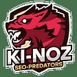 Ki-Noz logo