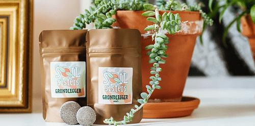 Branding & positionering Soil Sisters - Branding & Positionering