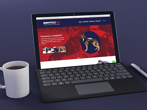 Diseño Web + Rebranding - Branding y posicionamiento de marca