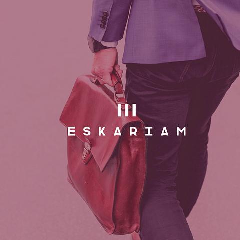 Agencia de marketing digital para Eskariam