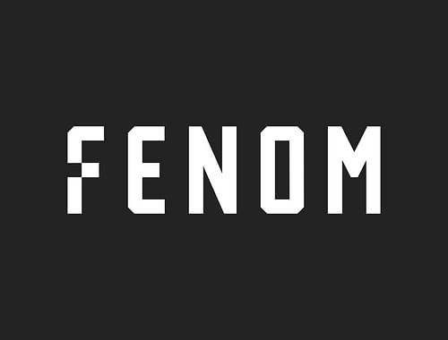 Fenom - E-commerce