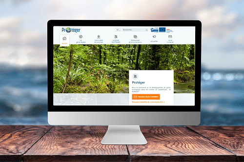 Parc National de Guadeloupe - Site Internet - Création de site internet