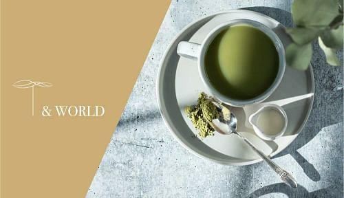 T & World | Identité visuelle & Site vitrine - Création de site internet
