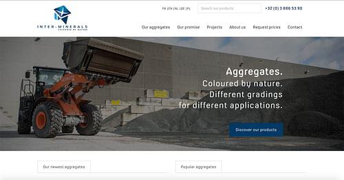 Multilanguage website for a construction provider - Fotografie