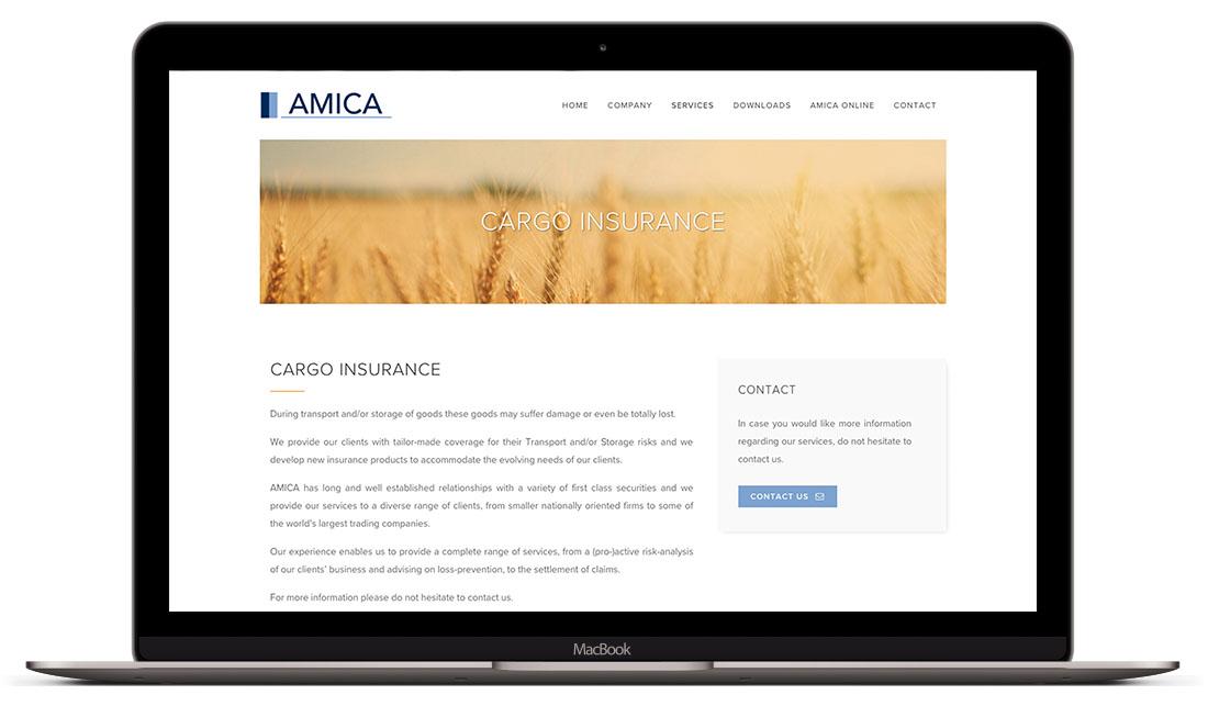 Amica - Website Creatie