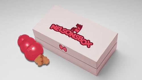 Nelsonsbox - Branding & Positionering