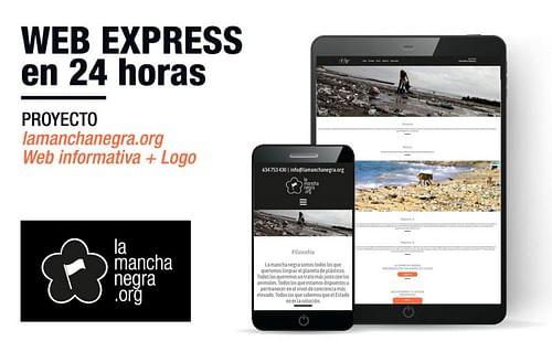 Web Expres 24 horas - Creación de Sitios Web