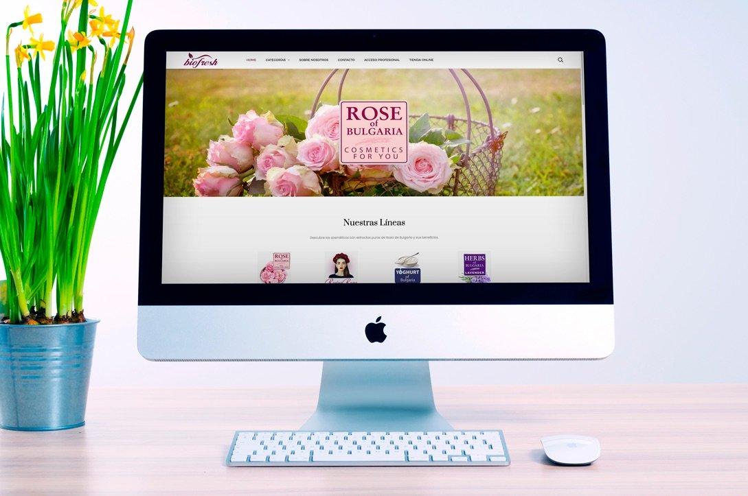 Página Web Corporativa - Creación de Sitios Web