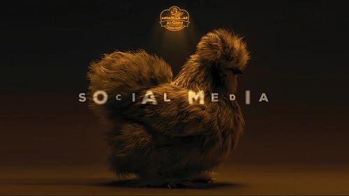 Al Qaed Feed - Social Media (1) - Social media