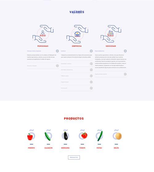 Rebranding y Web - Branding y posicionamiento de marca