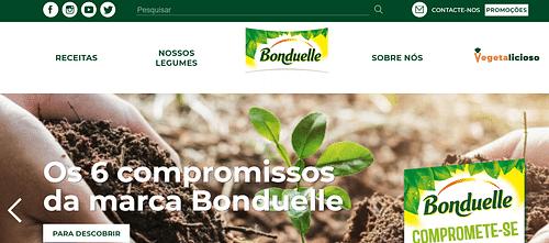 SEO, SEM, Redes Sociales, Diseño para Bonduelle PT - Creación de Sitios Web