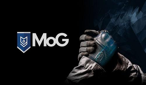 MoG branding, website en fotografie - Website Creatie