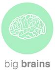 Big Brains logo