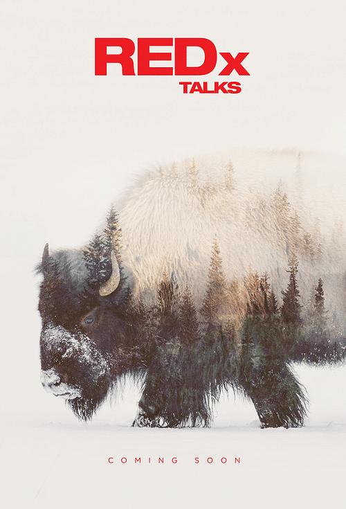 RedX Talks - Graphic Design