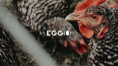 EGGO - Branding y posicionamiento de marca