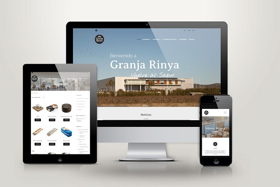Diseño web y catalogo online